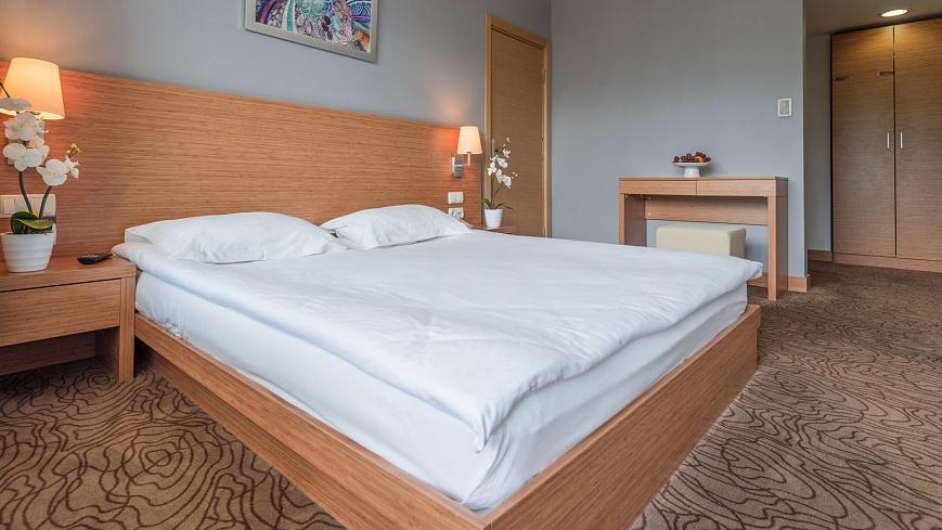 Стандарт-двухкомнатный-с-одной-двуспальной-кроватью-и-раскладным-диваном-(5).jpg